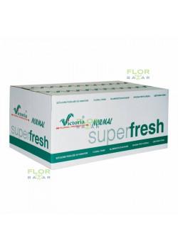 Флористическая пена оазис Victoria® Normal Super Fresh, ящик 20 кирпичей