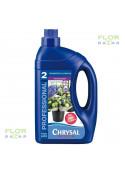 Консервант для срезанных цветов Chrysal Professional 2, канистра 1 л.
