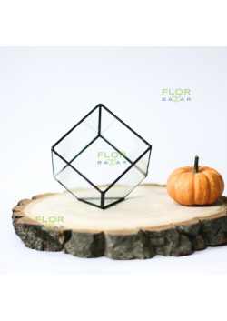 Флорариум Куб 110х110х110 мм