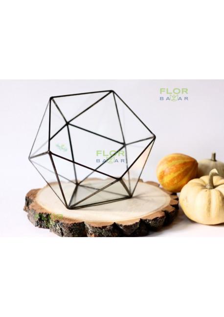 Флорариум Икосаэдр 170х200х160 мм