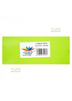 Цветная флористическая пена оазис RAINBOW®. Кирпич. Зелёный лайм