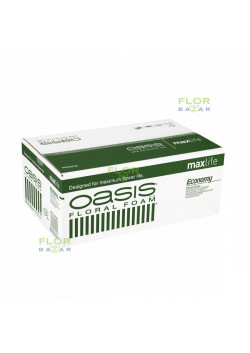 Флористическая пена оазис OASIS® MaxLife ECONOMY, ящик 20 кирпичей