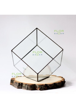 Флорариум Куб 240х240х220 мм